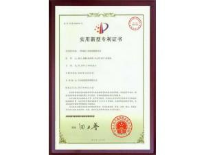 专利16;一种混凝土结构的模板体系
